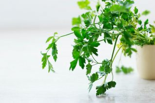 7 λαχανικά που μπορείς να καλλιεργήσεις εύκολα στη βεράντα και τον κήπο σου