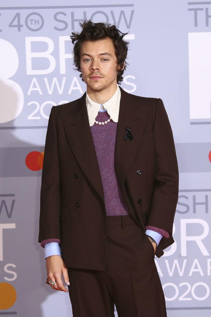 Harry Styles στιλ